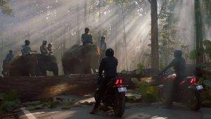 'ಹಾಥಿ ಮತ್ ಪಾಲೊ' ಜಾಹೀರಾತು ಮೂಲಕ ಆರ್ಇ ಬೈಕ್ಗಳಿಗೆ ಟಾಂಗ್ ಕೊಟ್ಟ ಬಜಾಜ್